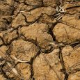 Climate Change - Scientists Continue to Warn About Effects