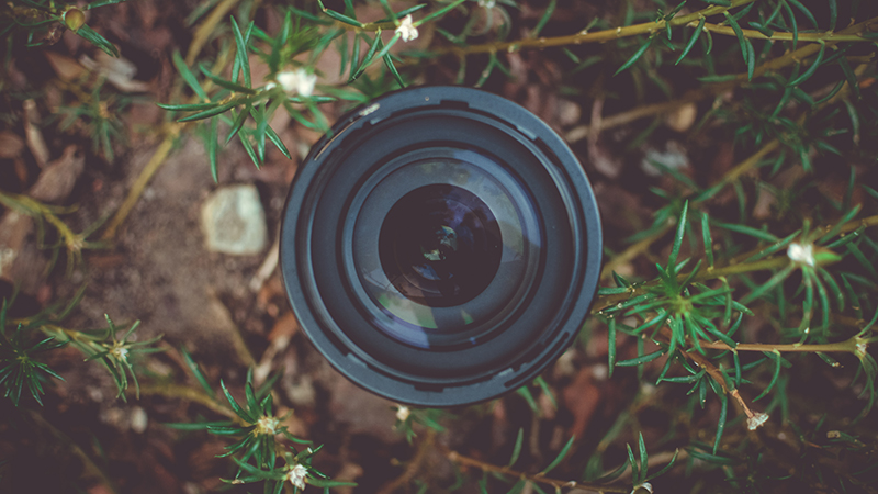 Photography - How to Get the Most Out of Your Kit Lens