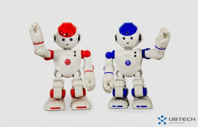 Alpha 2 - Enter the Humanoid Robot for the Family