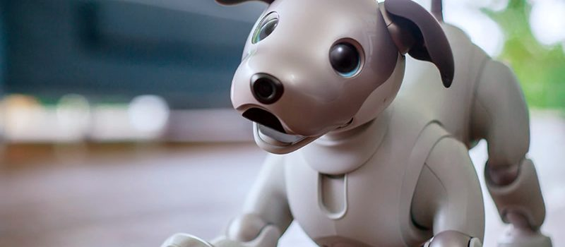 Sony Aibo, Your Best Robot Friend