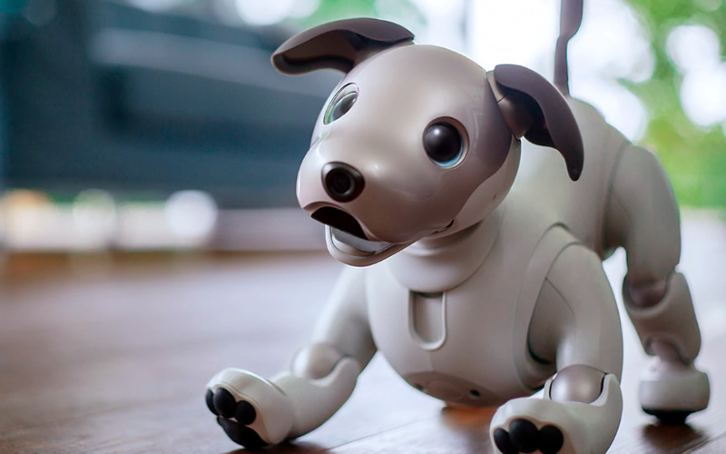 Sony Aibo, You're Best Robot Friend